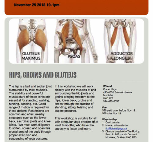 Hips, Groins, Gluteus Workshop Sun Nov 25 10-1pm $50/$60