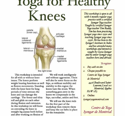 Yoga for Healthy Knees Sun May 5 '19 10am-1pm $50 on or before April 26, $60 after