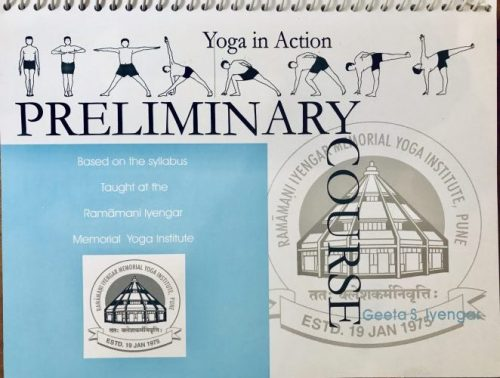 Pic of Yoga in Action Preliminary Book